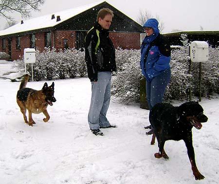 hunde og ejere