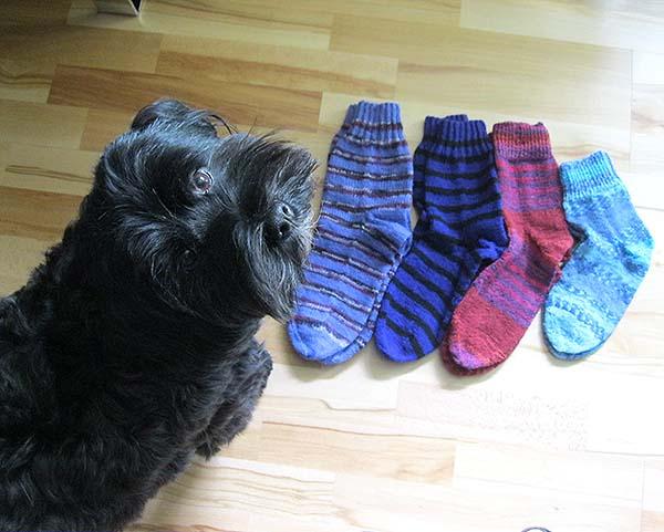 4 par sokker og diki