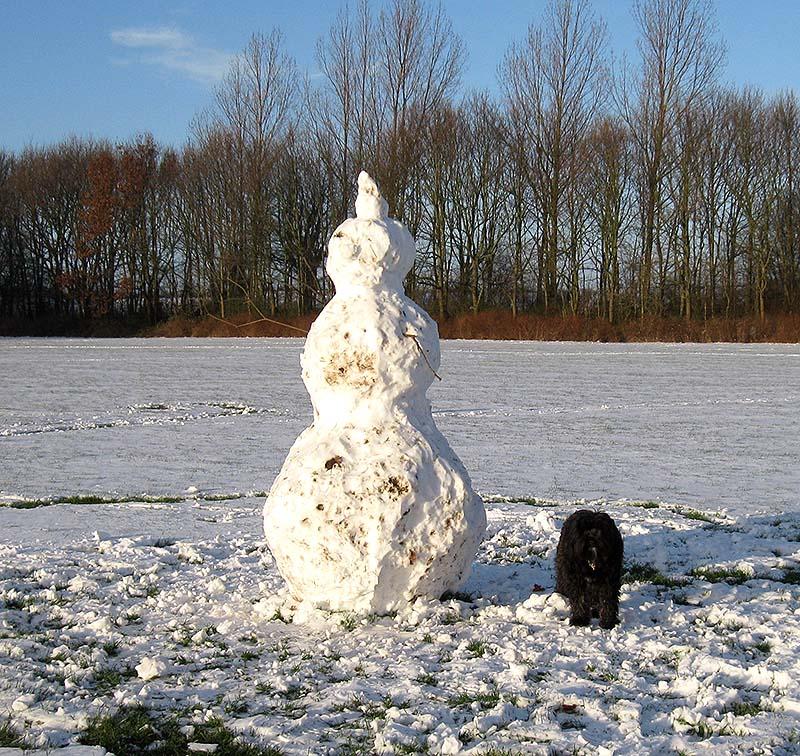 diki i sne 6